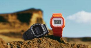 Casio G-Shock DW-5600WS-1JF